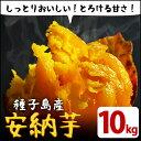 【ふるさと納税】種子島産 安納芋10kg【JA種子屋久】