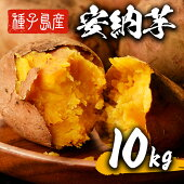 【ふるさと納税】種子島産安納芋(10kg)【種子島安納大地】
