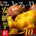 【ふるさと納税】種子島産 安納芋<紅>(10kg)【うずえ屋】