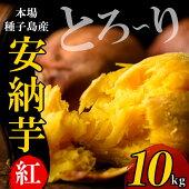 【ふるさと納税】種子島産安納芋紅(10kg)【うずえ屋】