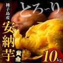 【ふるさと納税】種子島産 安納芋<黄金>(10kg)【うずえ...