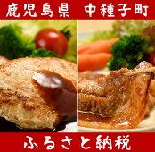 【ふるさと納税】黒豚ハンバーグ・スタミナ漬けセット