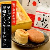 【ふるさと納税】チーズブッセ・半熟チーズケーキセット