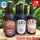 【ふるさと納税】CatchtheBeerおまかせビール3種6本セット