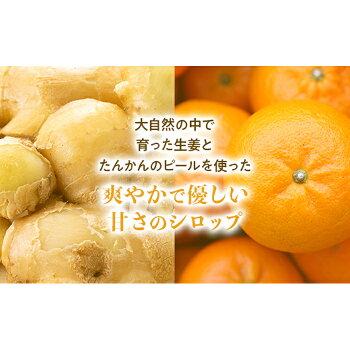 【ふるさと納税】屋久島ジンジャーシロップ大(200ml)×2本セット