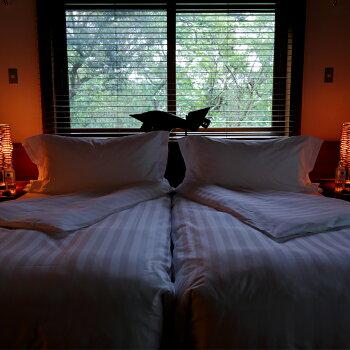 【ふるさと納税】サンドラヴィラ・ソーマ1F1泊2名様・夕朝食付ご宿泊券