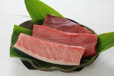 【ふるさと納税】C-24奄美大島産養殖クロマグロ(3柵セット)