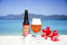 【ふるさと納税】C-20奄美群島島地ビールAMAMIGARDENPASSIONWHEATALE(アマミガーデンパッションウィートエール)12本入り