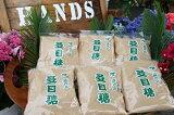 【ふるさと納税】ザラメ糖セット(粗糖)500g×15袋 松村商店