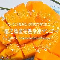 【ふるさと納税】冷凍マンゴー1