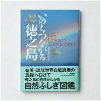 「いのちつながる徳之島」ページ