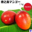 【ふるさと納税】徳之島マンゴー1キログラム