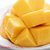 【ふるさと納税】清水果樹園のマンゴー1kg