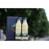 【ふるさと納税】ヤマ・シークニン果汁300ml×2本セット