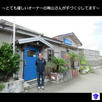 【ふるさと納税】夜光貝印鑑3