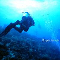 【ふるさと納税】徳之島ダイビング体験(半日)