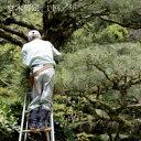 【ふるさと納税】お庭の植木剪定サービス