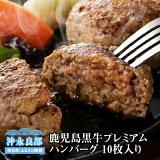 【ふるさと納税】鹿児島黒牛 プレミアムハンバーグ 10枚入り