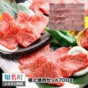 【ふるさと納税】鹿児島黒牛 極上焼肉セットB