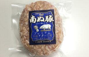 【ふるさと納税】E-8石垣島産アグ—豚(南ぬ豚)ハンバーグ10個セット