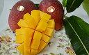 【ふるさと納税】石垣島のマンゴー 2kg 4〜5玉 6月下旬
