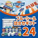 【ふるさと納税】【着日指定必須】ブルーシール アイス 24個入り(12種類) 詰合せ ギフト アイスクリーム blue seal スイーツ 冷凍 かわいい おしゃれ お取り寄せ 内祝い 誕生日 プレゼント沖縄 土産 浦添・・・