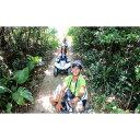 【ふるさと納税】沖縄の空の下気分爽快!糸満ジャングルバギー体験ツアー(大人2名様)