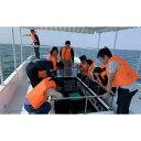 【ふるさと納税】<体験乗船券>糸満のサンゴを見に行く「グラスボート」大人ペア乗船券