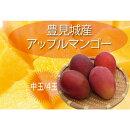 【ふるさと納税】豊見城完熟アップルマンゴー(中玉4玉)|沖縄