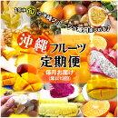 【ふるさと納税】沖縄フルーツ定期便|