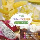【ふるさと納税】沖縄フルーツ定期便計3回発送9月10月11月国産グルメお取り寄せドラゴンフルーツバナナスターフルーツ果物くだもの詰め合わせ