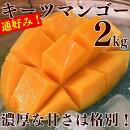 【ふるさと納税】先行予約!「究極の亜熱帯果実」幻のキーツマンゴー2kg
