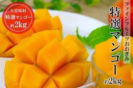 【農園直送】ファインフルーツおおぎみ特選マンゴー約2kg 2017年発送