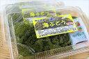 【ふるさと納税】【数量限定】農薬不使用シークヮーサー&海ぶどうセット