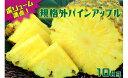 【ふるさと納税】【超目玉!】ボリューム満点!規格外パインアッ...