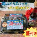 【ふるさと納税】【美ら海沖縄県東村産】茎付き海ぶどう2パック