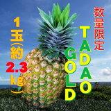 【ふるさと納税】【TADAO GOLD】1玉約2.3kg ※2021年6月頃から発送予定!