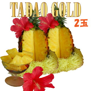TADAO GOLD