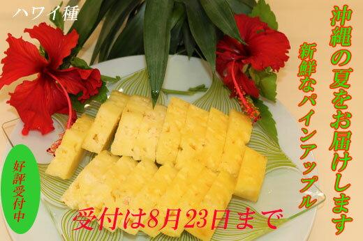 今帰仁産パインアップル(ハワイ種)2玉(1玉約1.7kg〜×2玉)