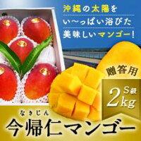 【ふるさと納税】先行予約!今帰仁マンゴーS級品2kg(2019年7〜8月発送)