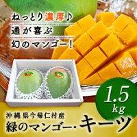【ふるさと納税】【期間限定】緑のマンゴー「キーツ」(1.5キロ)