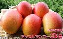 【ふるさと納税】沖縄県産マンゴー 良品(家庭用)2kg