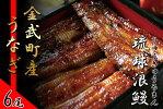 【ふるさと納税】金武町産「琉球浪鰻」のうなぎ蒲焼セット6尾