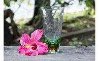 【ふるさと納税】琉球ガラスビアグラス緑FIELD