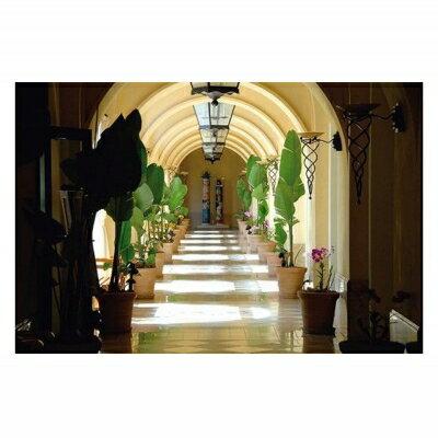【ふるさと納税】「ホテル日航アリビラ」 1泊2...の紹介画像3