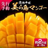 【ふるさと納税】完熟中城美ら島マンゴー4玉〜6玉(約2kg優)