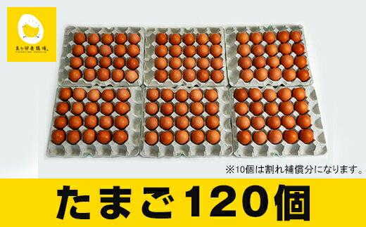 【ふるさと納税】美ら卵養鶏場の新鮮で濃厚な卵<120個入り>