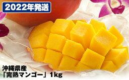 【ふるさと納税】【2022年発送】直売所で厳選!沖縄県産「完熟マンゴー」1kg