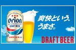 【ふるさと納税】オリオンドラフトビール【350ml×24缶】