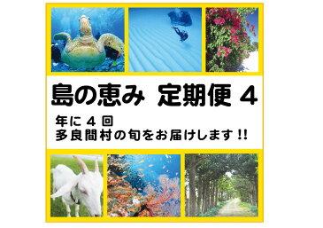 【ふるさと納税】島の恵み定期便4